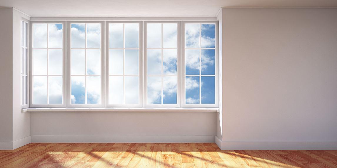 Pinguin Fenster